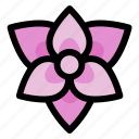nature, garden, flower, plant, floral, orchid icon