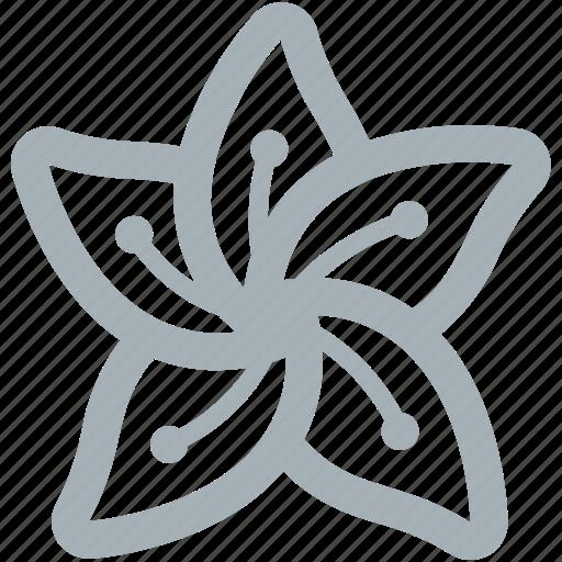 dafodil, flower, flowers icon