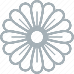 daisy, flower, flowers icon