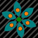 abstract, circle, design, flower, garden, nature, shape