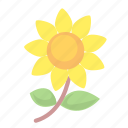 blossom, flower, flowers icon