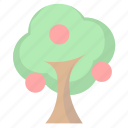 apple, fruits, tree icon