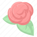 flower, rose, valentine icon