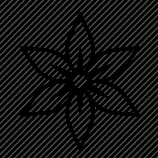 amaryllis, blossom, floral, flower, petal, plant icon