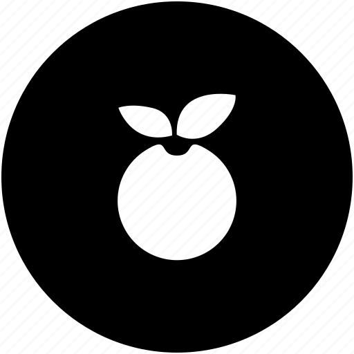 apple, herbal, natural, product, strawsberry icon