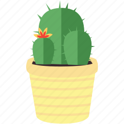 cactus, flower, flowers, forest, garden, plant, tree icon