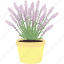bloom, ecology, flower, flowers, garden, spring, violet icon