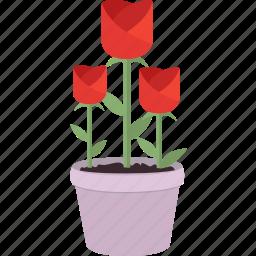 blossom, flower, flowers, garden, gardening, rose, spring icon