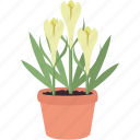 bloom, flower, flowers, garden, gardening, plant, spring icon