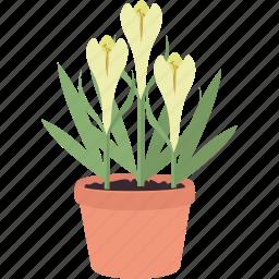 bloom, flower, flowers, garden, gardening, plant, spring icon