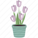 ecology, floral, flower, flowers, garden, tulips icon