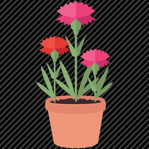 bloom, floral, flowers, garden, gardening, spring icon