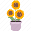 blossom, decoration, flowers, garden, spring, sunflower icon