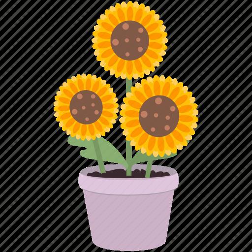 blossom, decoration, flowers, garden, spring, sunflower icon
