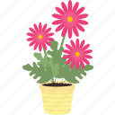 ecology, environment, flower, flowers, garden, gardening icon
