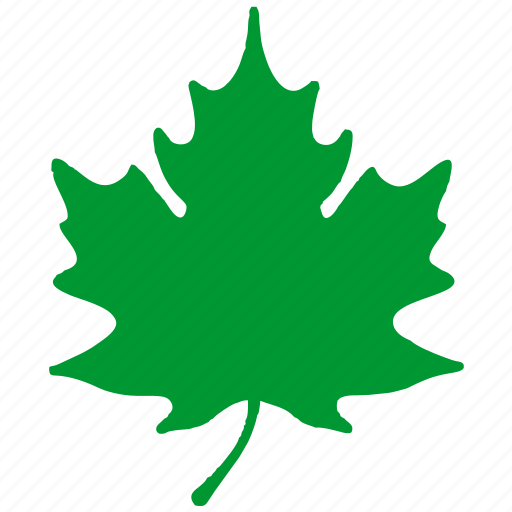 eco, ecology, green, leaf, nature, plant, tree icon