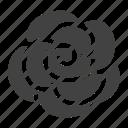 blossom, rose, flower, garden, nature
