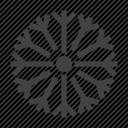 Dandelion, flower, garden, nature, spring icon - Download on Iconfinder