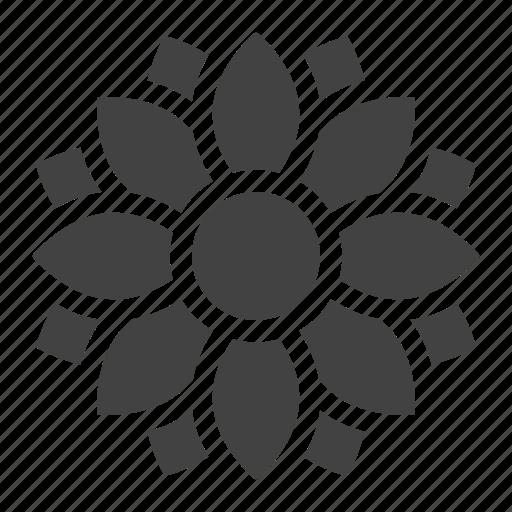 Flower, garden, nature, spring, sunflower icon - Download on Iconfinder