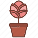 floral, flower, flowers, garden, nature, plants, pots icon