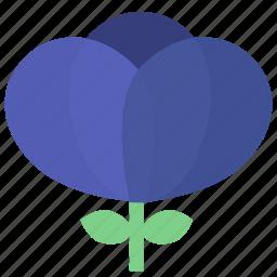 blue flower, floral, flowers, garden, garden flowers, garden plants, plants icon