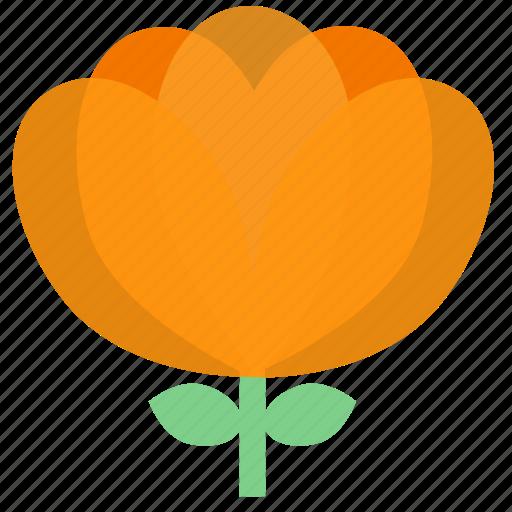 floral, flowers, garden, garden flowers, garden plants, orange flower, plants icon
