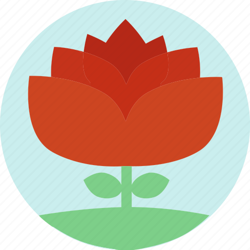 floral, flowers, garden flowers, garden plants, orange flower, plants, red flower icon