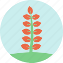 flowers, garden, garden plants, leaves, plants, red flower, red leaves icon
