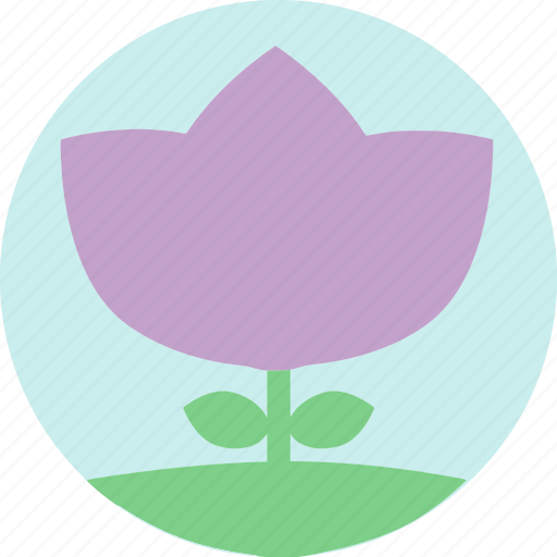 floral, flowers, garden, garden flowers, garden plants, plants, purple flower icon