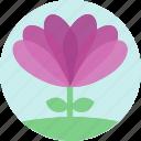 floral, flowers, garden, garden flowers, garden plants, plants, purple flower icon