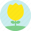 floral, flowers, garden, garden flowers, garden plants, plants, yellow flower icon