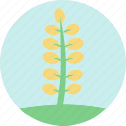flowers, garden flowers, garden plants, leaves, plants, yellow flowers, yellow leaves icon