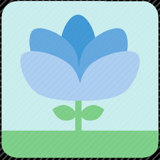 blue flowers, floral, flowers, garden, garden flowers, garden plants, plants icon