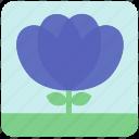 floral, flowers, garden, garden flowers, garden plants, plants, purple flowers icon