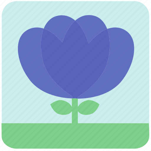 floral, flowers, garden, garden flowers, garden plants, plants, purple flowers icon