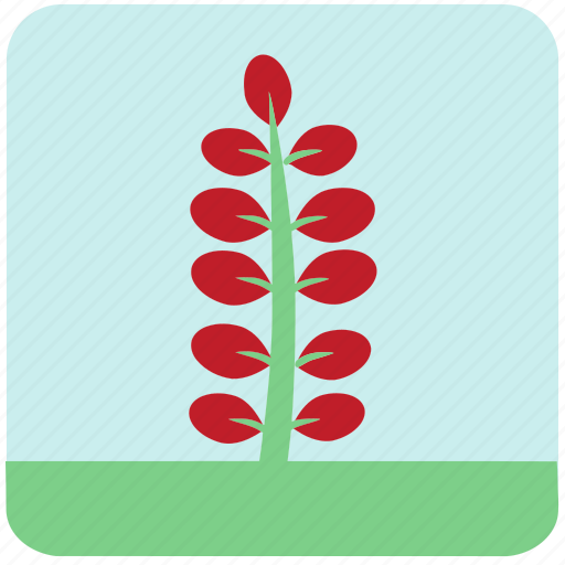 flowers, garden, garden plants, leaves, plants, red flowers, red leaves icon
