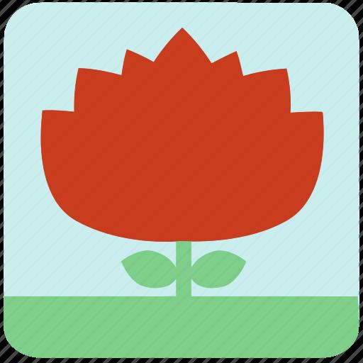 flowers, garden, garden flowers, garden plants, orange flower, plants, red flower icon