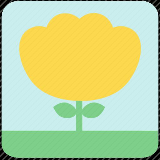 floral, flowers, garden, garden flowers, garden plants, plants, yellow flower icon