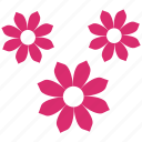 bloom, decotation, floral, flower, flowers, ornament, plant icon