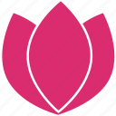 abstract, ecology, flower, leaves, lotus, nature, water plant icon