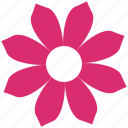 bloom, daisy, ecology, flower, garden, nature, plant icon