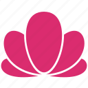 abstract, bloom, crown, flower, leaf, lotus, yoga icon