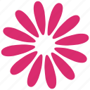 bloom, daisy, decoration, flower, ornament, petals, plant icon