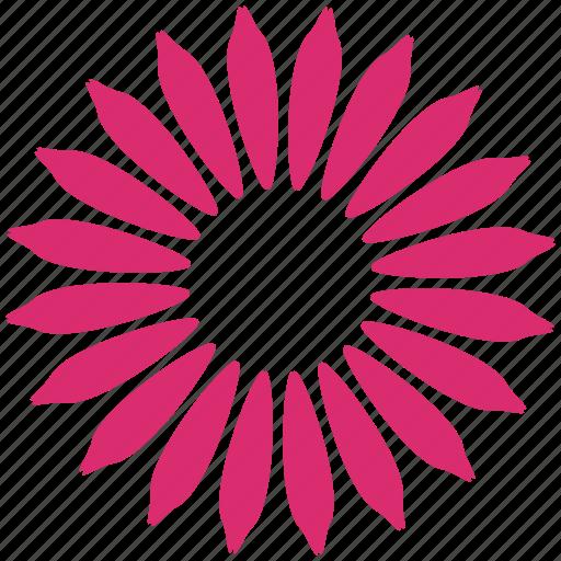 daisy, flower, nature, organic, plant, sum, sunflower icon