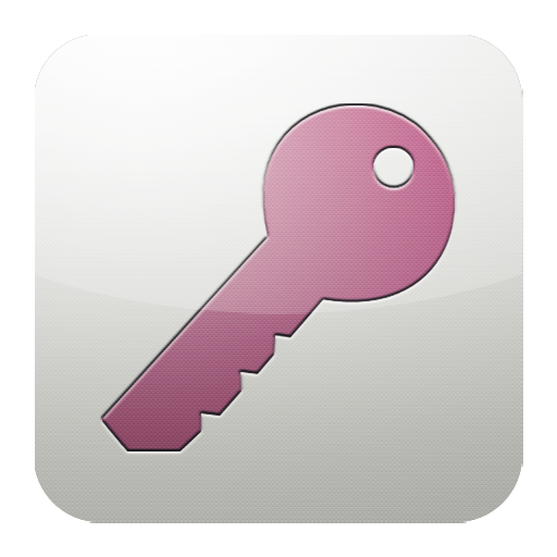 access, ms icon