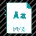 extension, file, font, font extension, pfm, type, type font