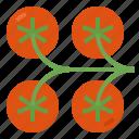 food, vegetable, vegan, recipe, tomato icon
