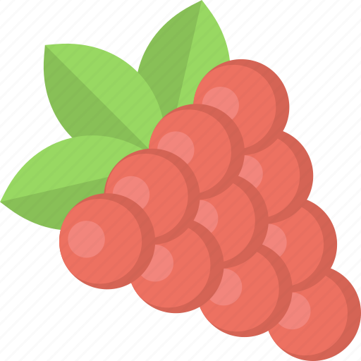 food, fruit, grapes, grapes bunch, healthy diet icon