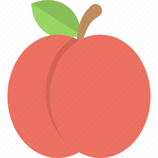 Healthy food, apricot, nature, organic fruit, nutritious diet icon