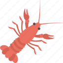 crab, food, mud crab, sea creature, seafood icon